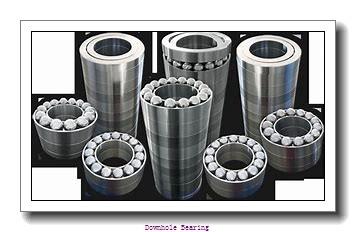 NU3036X2M/C4 Downhole bearing