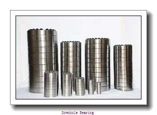 12BA5 Downhole bearing