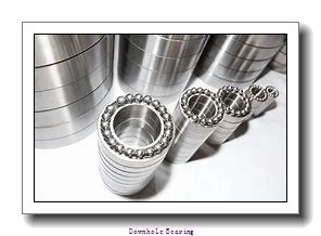549829 Downhole bearing
