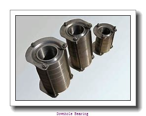 E5017X NNTS1  Downhole bearing