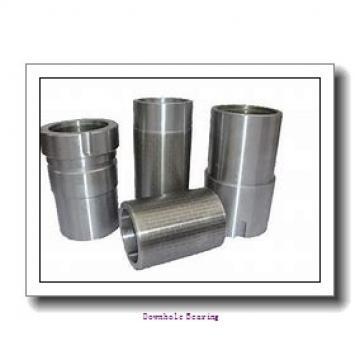 60/500/P6SI Downhole bearing