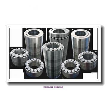 NUT50120H Downhole bearing