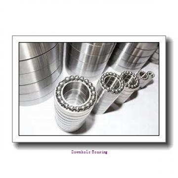 19954EQ Downhole bearing