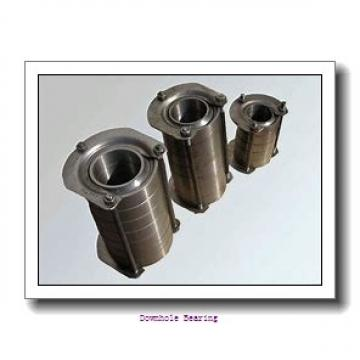 E5017X NNTS1  Downhole bearing