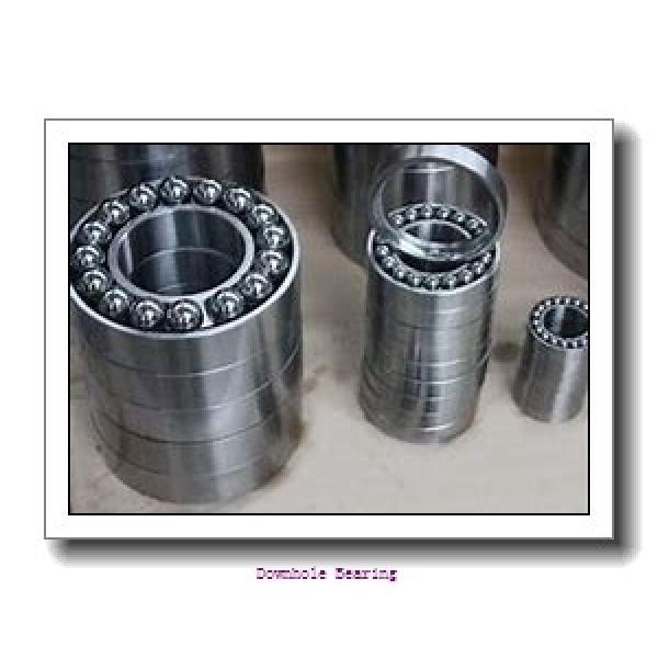 10700-RIT Downhole bearing #1 image